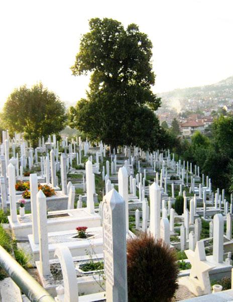 ▲ 사라예보 공동묘지에 세워진 새하얀 비석들.