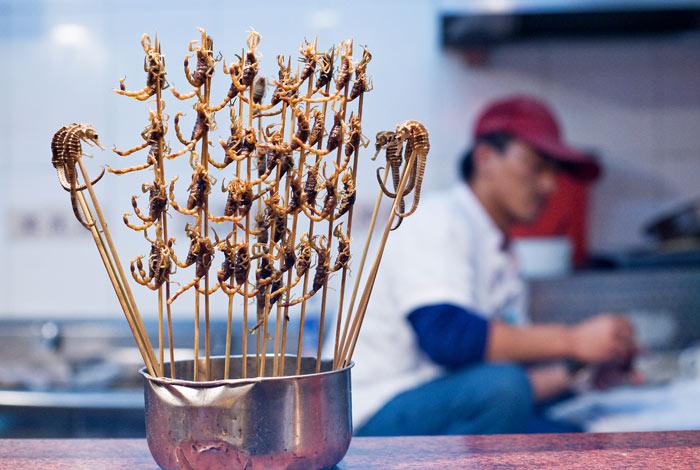 ▲ 해마와 전갈 등이 간식으로 만들어져 필리핀 거리에서 판매되고 있다.