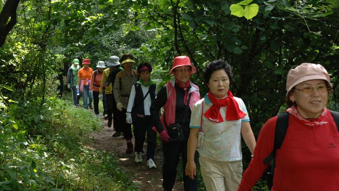 ▲ 소백산 자락길을 찾은 탐방객들.