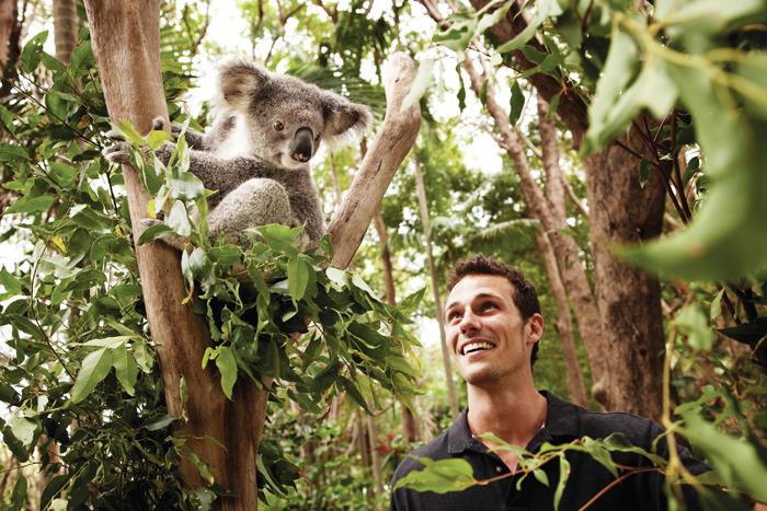 ▲ 브리즈번은 자연환경에 아이디어와 투자를 더해 세계적 관광도시로 발전했다.