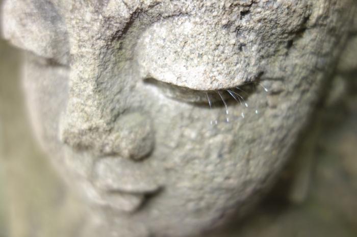 ▲ 석불의 눈꺼풀에 속눈썹 자라난 `우담바라`.