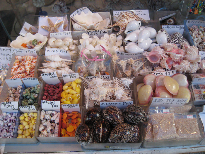 ▲ 바다가 지척인 오키나와엔 조개껍질로 만든 기념품을 판매하는 가게가 흔하다.