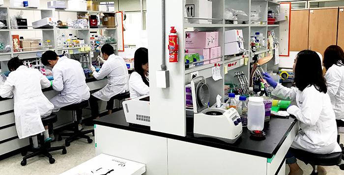 ▲ 한국한의학연구원 한의기술응용센터 연구원들이 '한방 고유처방 자금정(紫金錠)'에 대한 연구를 하고 있는 광경. / 대구시 제공