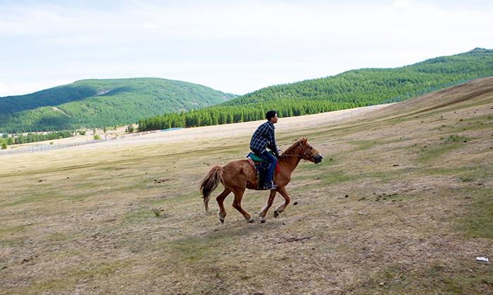 ▲ 몽골 여행에선 말에 올라 초원을 달리는 즐거움을 누릴 수 있다.